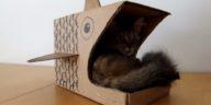 niche carton