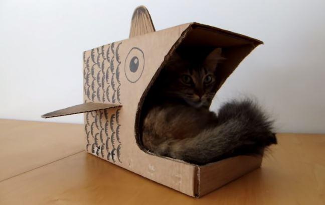 vid o cr ez facilement une adorable niche pour chat en carton en forme de poisson animalaxy. Black Bedroom Furniture Sets. Home Design Ideas
