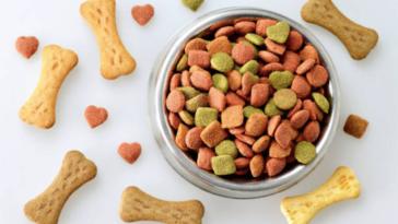 biscuits friandises chien