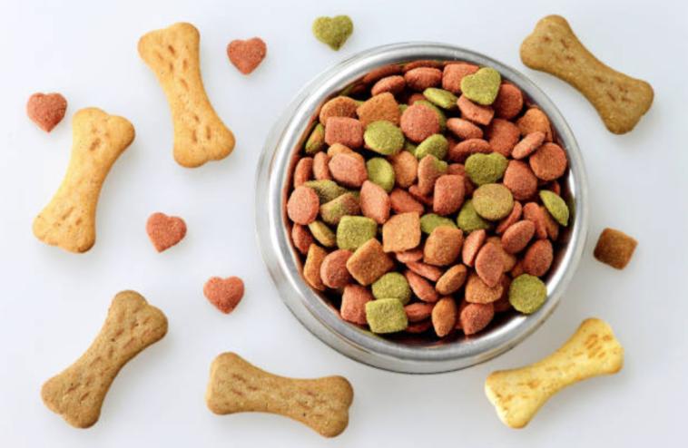 3 recettes de friandises maison pour chiens animalaxy for Alimentation maison pour chien