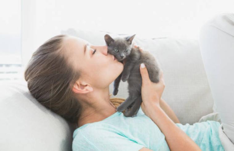 accueillir un chaton chez soi les tapes respecter. Black Bedroom Furniture Sets. Home Design Ideas
