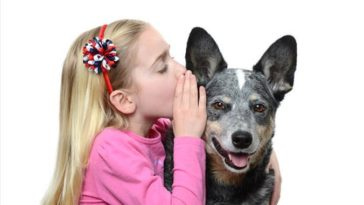 chien parle secret