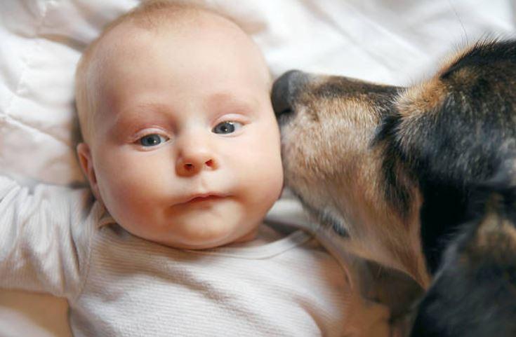 chien bébé enfant