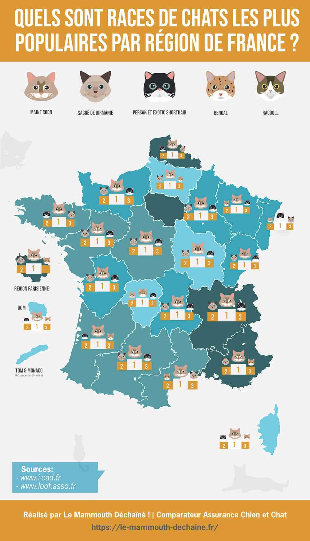 infographie chats préférés des français