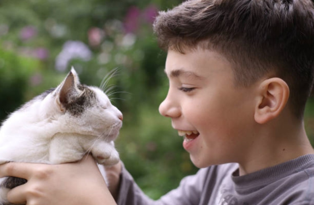 chat enfant