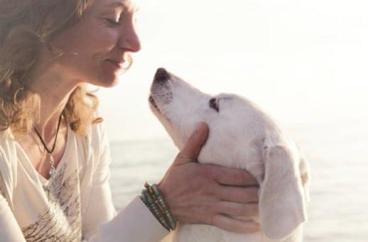 chien câlin femme humain