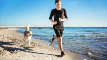 chien course jogging homme humain