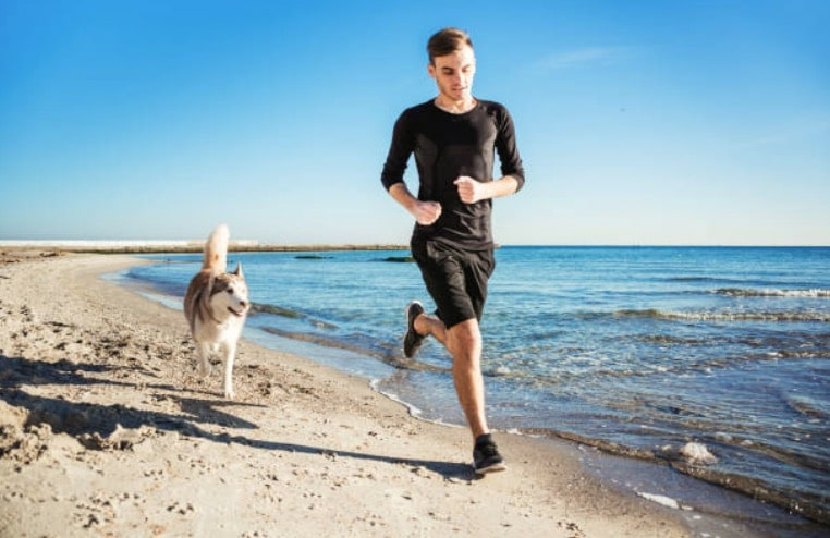 chien course jogging homme humain
