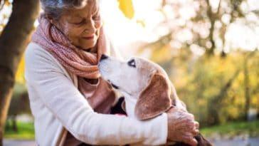 chien personne âgée câlin