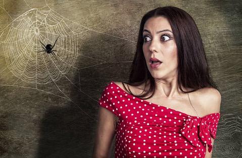 araignée femme peur