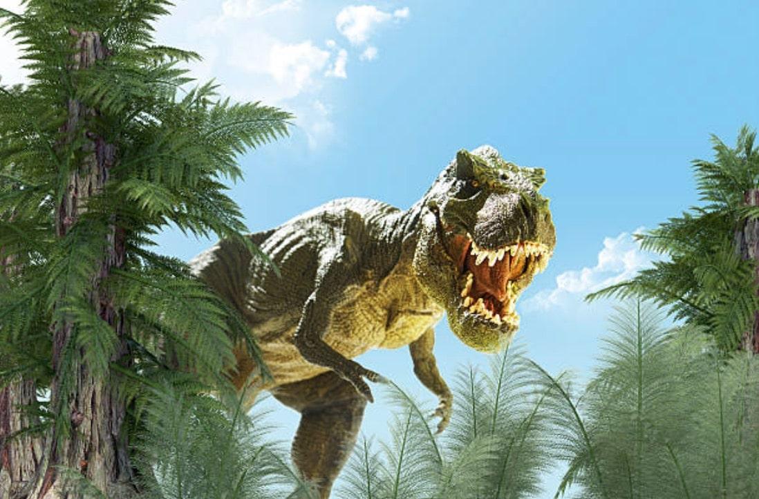 dinosaure t. rex