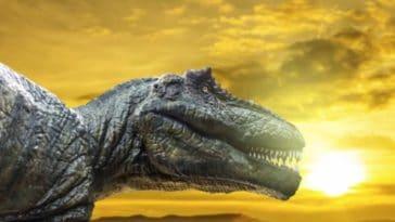 dinosaure tyrannosaure t-rex