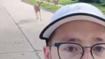 joggeur cerfs