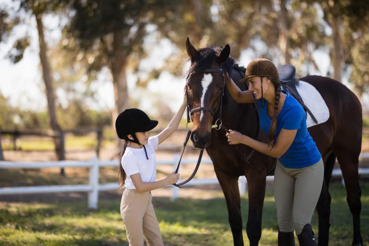 pratique de l'éthologie équitation