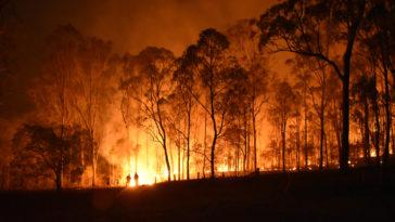 feux incendies Australie