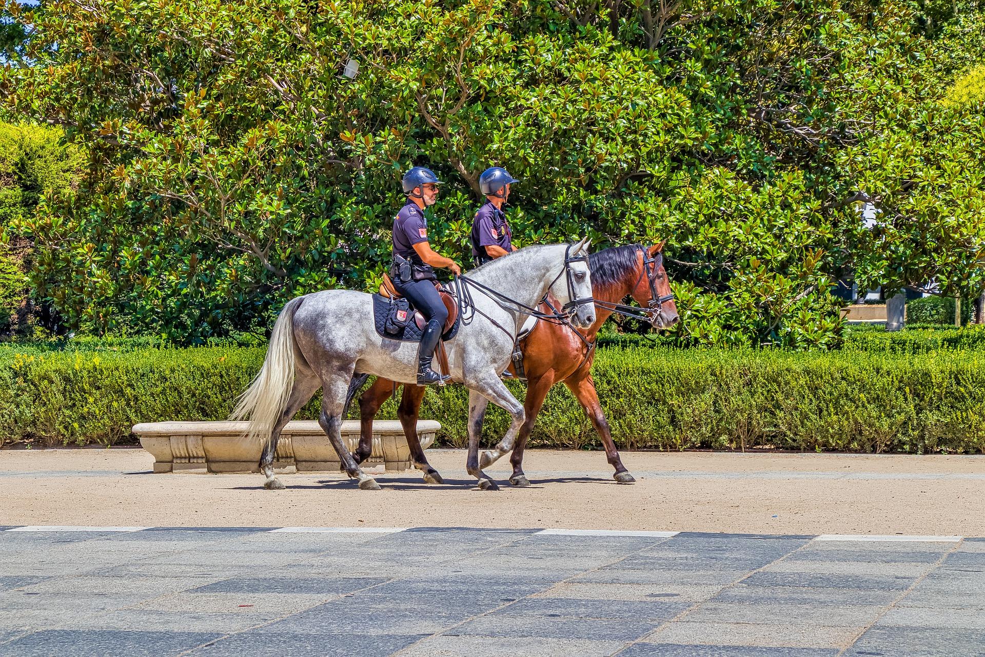 Police à cheval