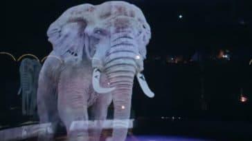 éléphant cirque roncalli