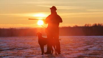 chasseur chien coucher de soleil fusil