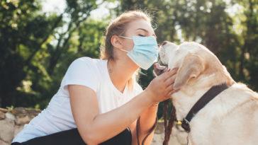 chien masque flair coronavirus