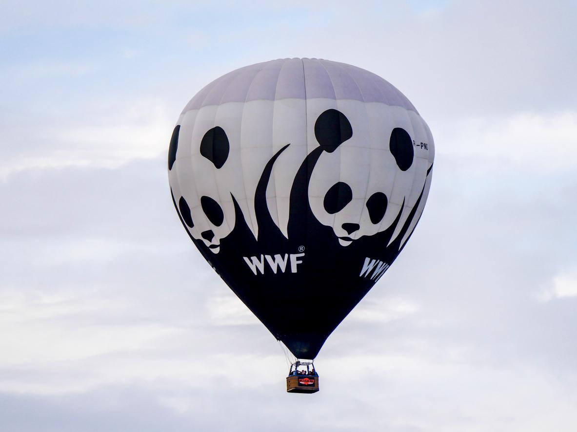 association WWF montgolfière