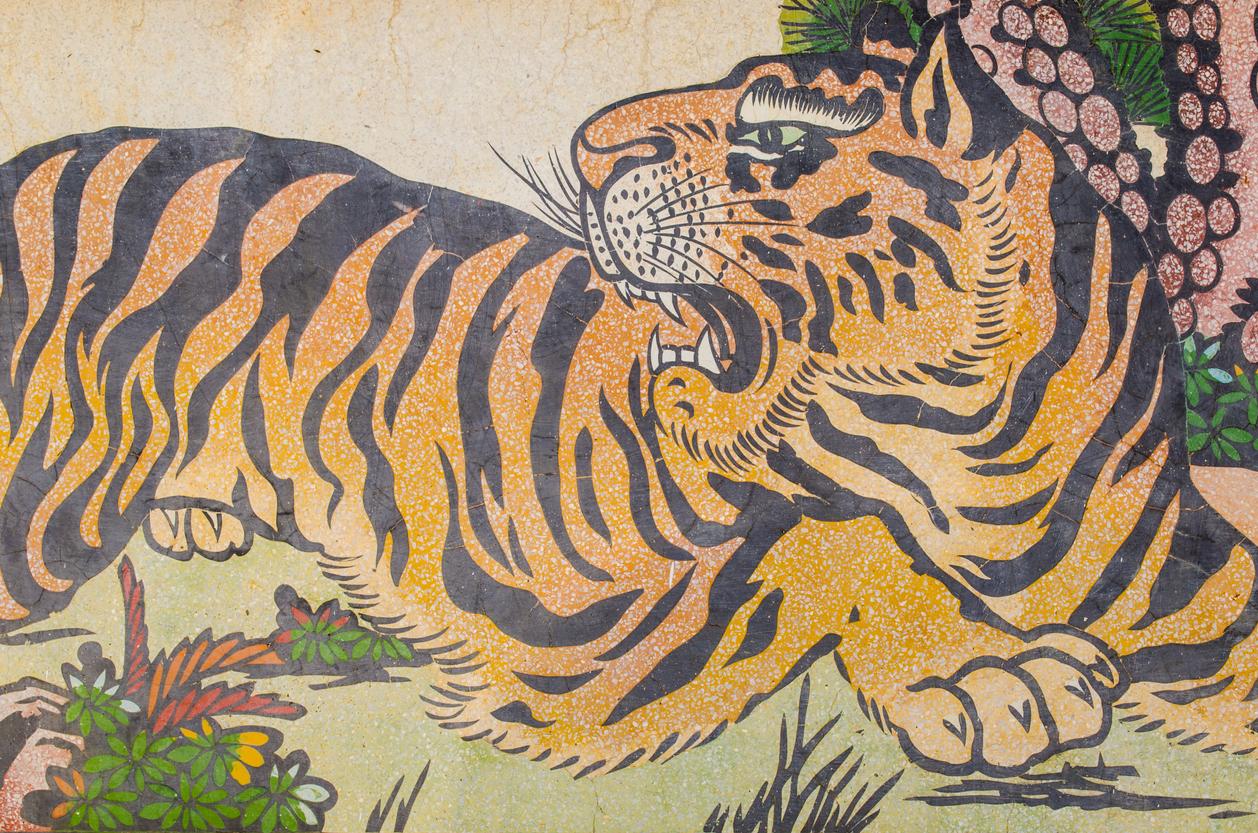 tigre chine