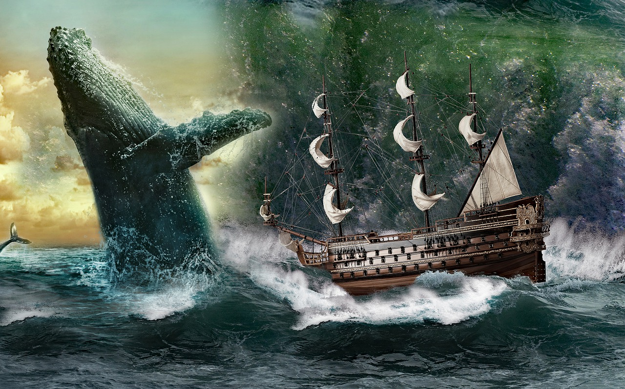 moby dick baleine navire